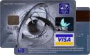 Visa Classic—AVAL Bank